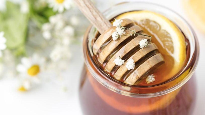 Honeypot: Was ist das?